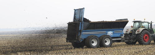 trailed manure spreader / verticals beaters / 2-axle