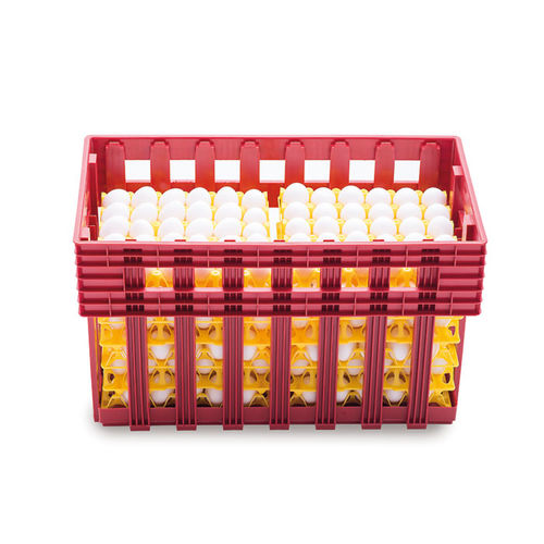 transport egg box / for chicken eggs / plastic