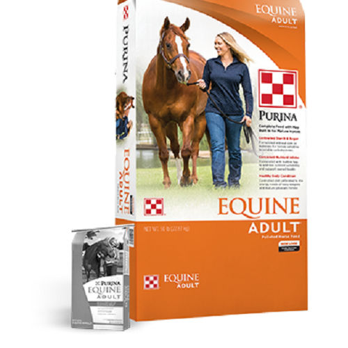 animal feed supplement / for horses / mineral / vitamin