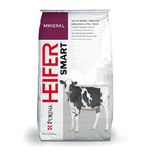 animal feed supplement / calf / mineral / vitamin