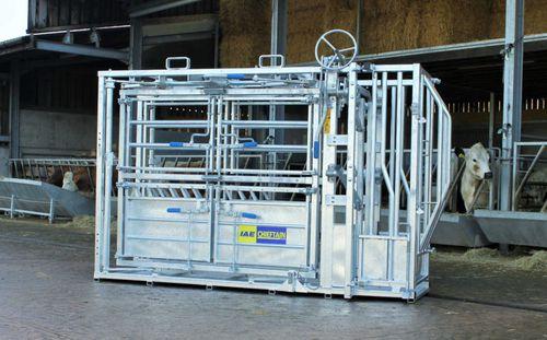cattle squeeze chute