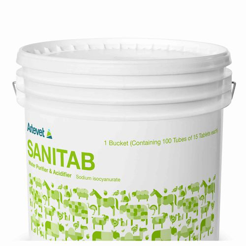antibacterial feed additive / poultry / dry