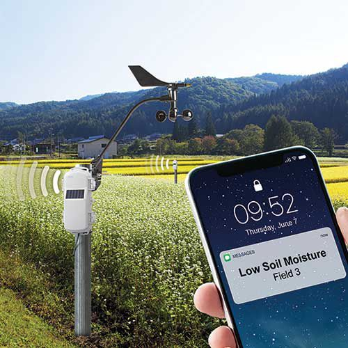 crop monitoring system / soil / wireless / remote