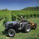 narrow tractor / synchro-shift / compact / with ROPS