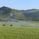 ditch-fed irrigation boom / hose-fed / 4-wheel / hippodrome