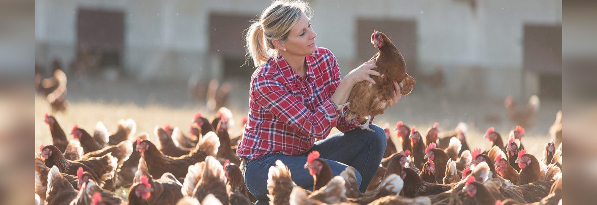 8 digital technologies to disrupt the turkey industry