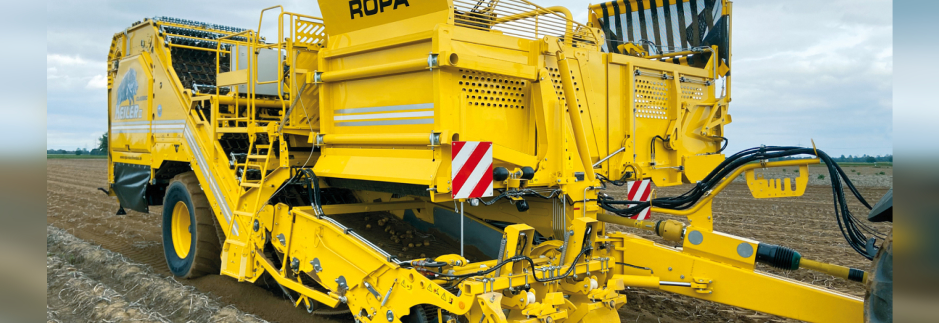 ROPA is focusing on further growth in the potato market