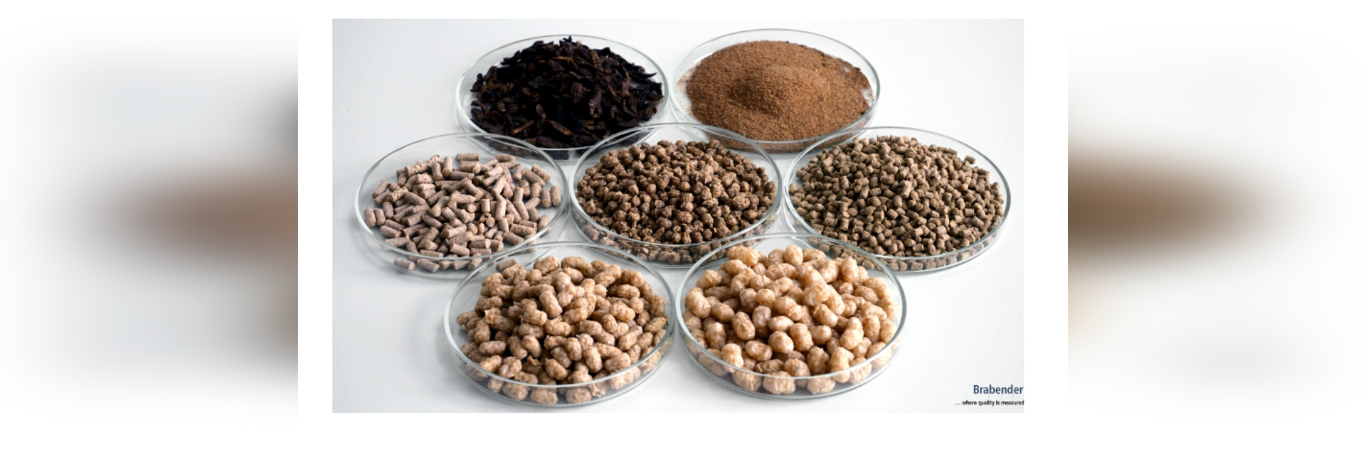 Whether floating, suspended, or slowly sinking: With the TwinLab-F 20/40 it is possible to test aquafeed produced from various raw materials (such as insect protein, see upper row) on a laboratory ...