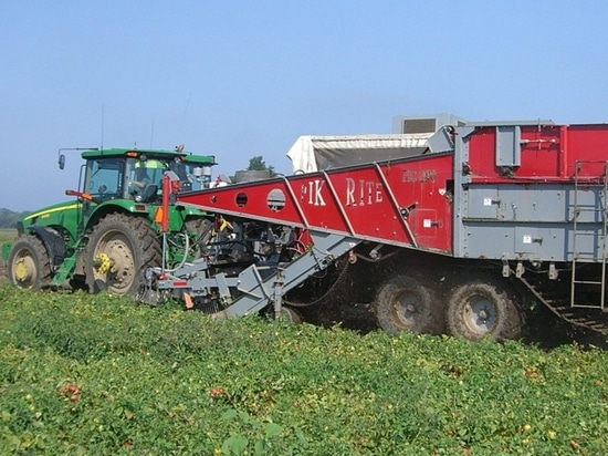 Automation in Vegetable Harvesting Picks up the Momentum