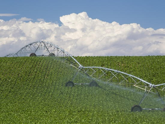 Farmers' adoption of irrigation tools will increase efficiencies