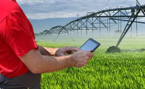 Pilotaggio dell'irrigazione