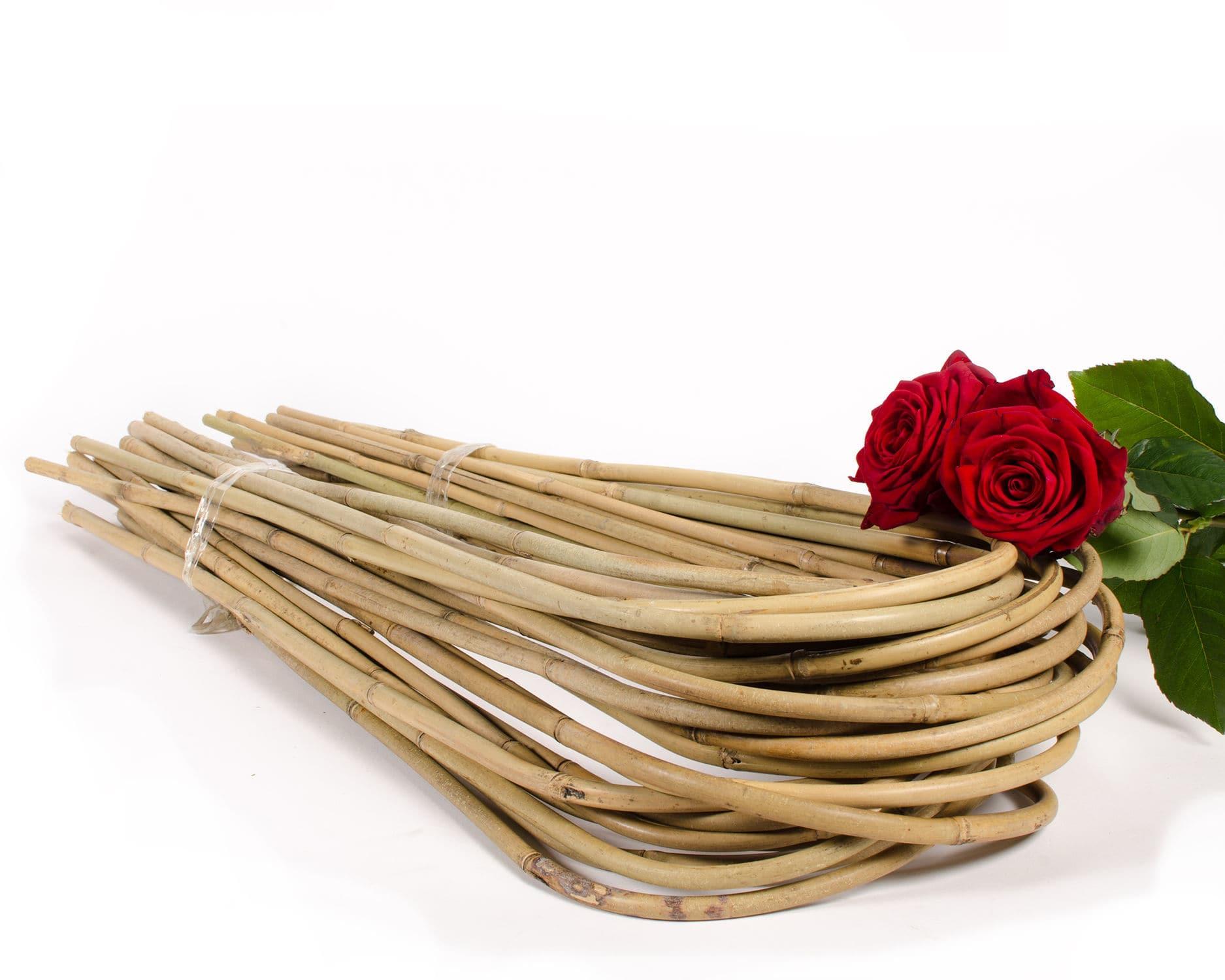 Tutori Per Rose Rampicanti tutore in bambù - tonkin u-shape and trellis - van nifterik
