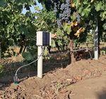 stazione meteorologica umidità del suolo