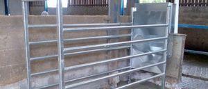 牛用フィードステーション / 管理ソフトウェア付 / 自動認識システム / プログラム可能