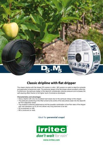 D5 - M5