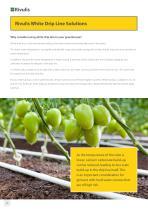 Greenhouse Brochure - 10