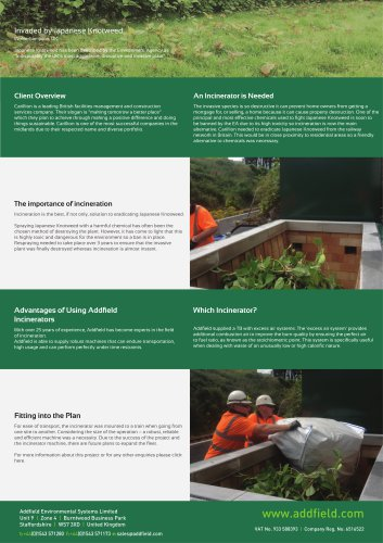 Invaded by Japanese Knotweed case study