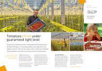 Horticultural lighting - 6
