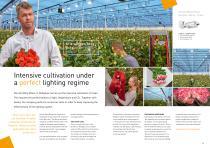Horticultural lighting - 8