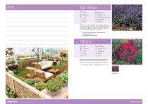 Flower Catalogue 2017-2018 SEED - 6