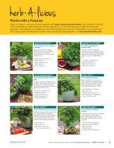 2021 Darwin Perennials Catalog (Star Roses & Plants) - 11