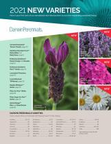 2021 Darwin Perennials Catalog (Star Roses & Plants) - 3