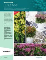 2021 Darwin Perennials Catalog (Star Roses & Plants) - 6