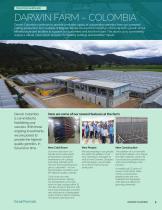 2021 Darwin Perennials Catalog (Star Roses & Plants) - 7