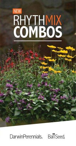 Perennials-Rhythmix