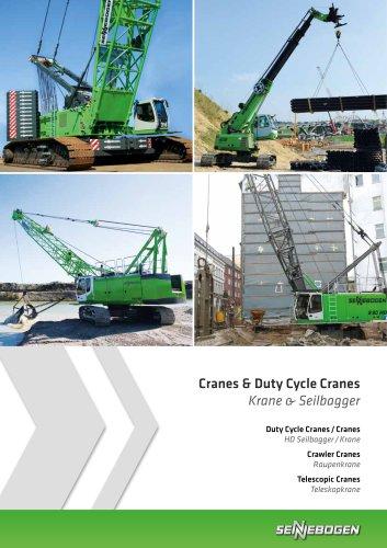Cranes / Duty Cycle Cranes