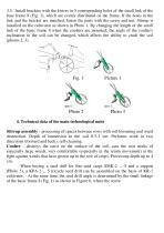 Manual cultivator KR -1 - 3
