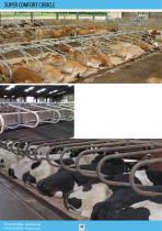 Dairy Housing - 12