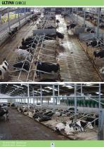 Dairy Housing - 4