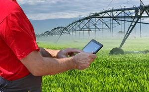 Gestão da irrigação