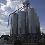 silo de ração / para ração / em aço / em aço galvanizado